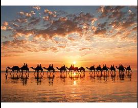 1000 ATARDECER DORADO EN CABLE BEACH, AUSTRALIA